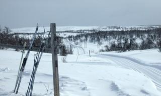 Skitur. Snelandskab, skiløjpe